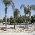Outside of the new Granite Hills HS stadium (El Cajon, 2009)