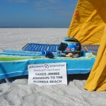 The Blue Bunny Helmet of Hope enjoying some time at the beach (Clearwater, 2012)